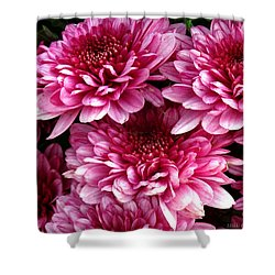 Fall Flowers Shower Curtain