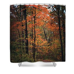 Fall In Arkansas Shower Curtain