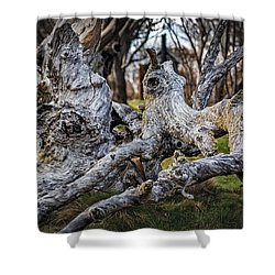 Fallen From Grace Shower Curtain by Mark Lucey