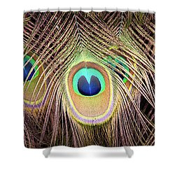 Shower Curtain featuring the photograph Fan Of Feathers by Joye Ardyn Durham