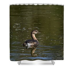 Shower Curtain featuring the photograph Feathered Friend by Kathy Gibbons