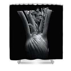 Fennel Shower Curtain by Wayne Sherriff