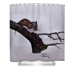 Field Mouse Shower Curtain by Judy Kirouac