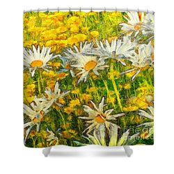 Field Of Daisies Shower Curtain