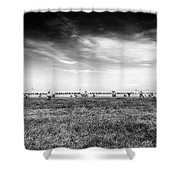 Shower Curtain featuring the photograph Fields Of The Elysium Locomotive by John Williams
