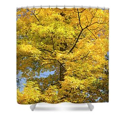 Shower Curtain featuring the photograph Fire In The Sky by Tim Gainey