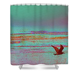 First Flight Shower Curtain