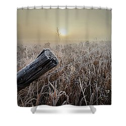 First Frost Shower Curtain