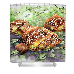 Fish Bowl Shower Curtain by William Love