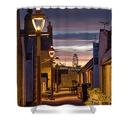 Fittie At Night Shower Curtain