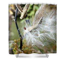 Flight Of The Milkweed Shower Curtain