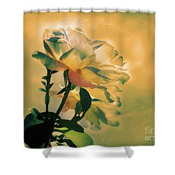 Shower Curtain featuring the photograph Flores De Invierno by Alfonso Garcia