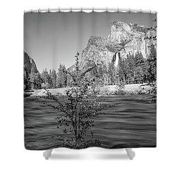 Flow Shower Curtain by Ryan Weddle