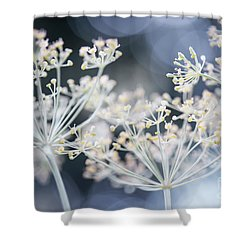 Shower Curtain featuring the photograph Flowering Dill by Elena Elisseeva