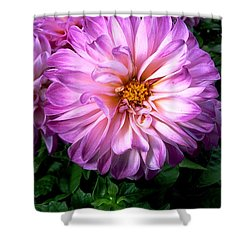 Shower Curtain featuring the photograph Flowers by Bernd Hau