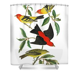 Shower Curtain featuring the photograph Flying Away by Munir Alawi