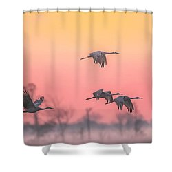 Shower Curtain featuring the photograph Flying Into The Light And Fog by Kelly Marquardt