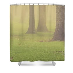 Shower Curtain featuring the photograph Foggy Trees Pano by Joye Ardyn Durham