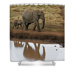 Shower Curtain featuring the photograph Follow Me by Gary Hall