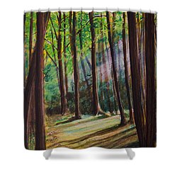 Forest Light Shower Curtain by Ron Richard Baviello