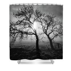 Shower Curtain featuring the photograph Forever Buddies by Jeremy Lavender Photography