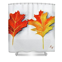 Four Autumn Leaves Shower Curtain