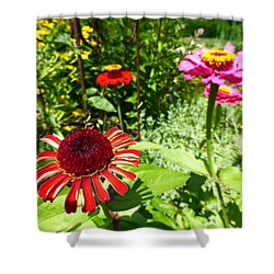 Four Beauties Shower Curtain