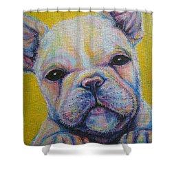 French Bulldog Shower Curtain by Jack No War