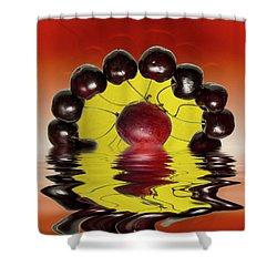 Fresh Cherries And Plums Shower Curtain