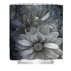 From The Palest Of Light Shower Curtain