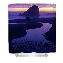 Shower Curtain featuring the photograph Gem by Chad Dutson