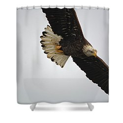 Gliding Shower Curtain