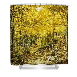 Golden Aspens In Colorado Mountains Shower Curtain