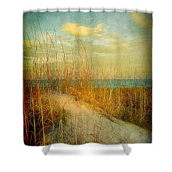 Shower Curtain featuring the photograph Golden Dune by Linda Olsen