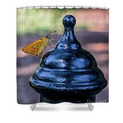 Golden Moth Shower Curtain