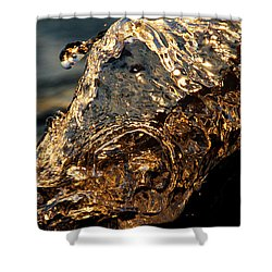 Shower Curtain featuring the photograph Golden Wave by Rico Besserdich