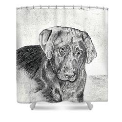 Shower Curtain featuring the drawing Gozar by Mayhem Mediums