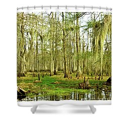Grand Bayou Swamp  Shower Curtain by Scott Pellegrin