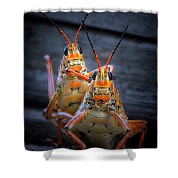 Grasshoppers In Love Shower Curtain by Mark Andrew Thomas