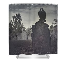Graveyard Shower Curtain