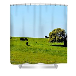 Shower Curtain featuring the photograph Grazing In The Grass by AJ Schibig