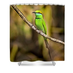 Green Bee-eater Shower Curtain
