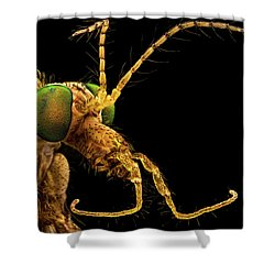 Green Eyed Crane Fly Shower Curtain