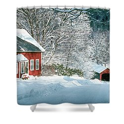 Shower Curtain featuring the photograph Green River Bridge In Snow by Paul Miller