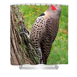 Handsome Pose Shower Curtain