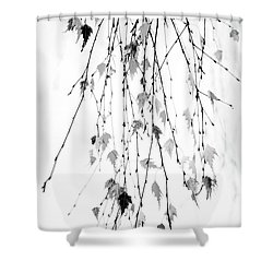 Shower Curtain featuring the photograph Hanging by Rebecca Cozart