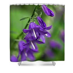 Shower Curtain featuring the photograph Harebells 2n by Leif Sohlman