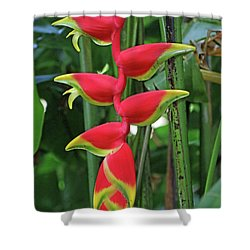 Hawaii Flora Shower Curtain