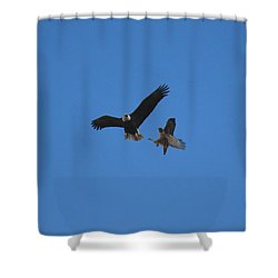Hawk Vs Eagle Shower Curtain