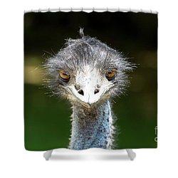 Head Of Ostrich Shower Curtain